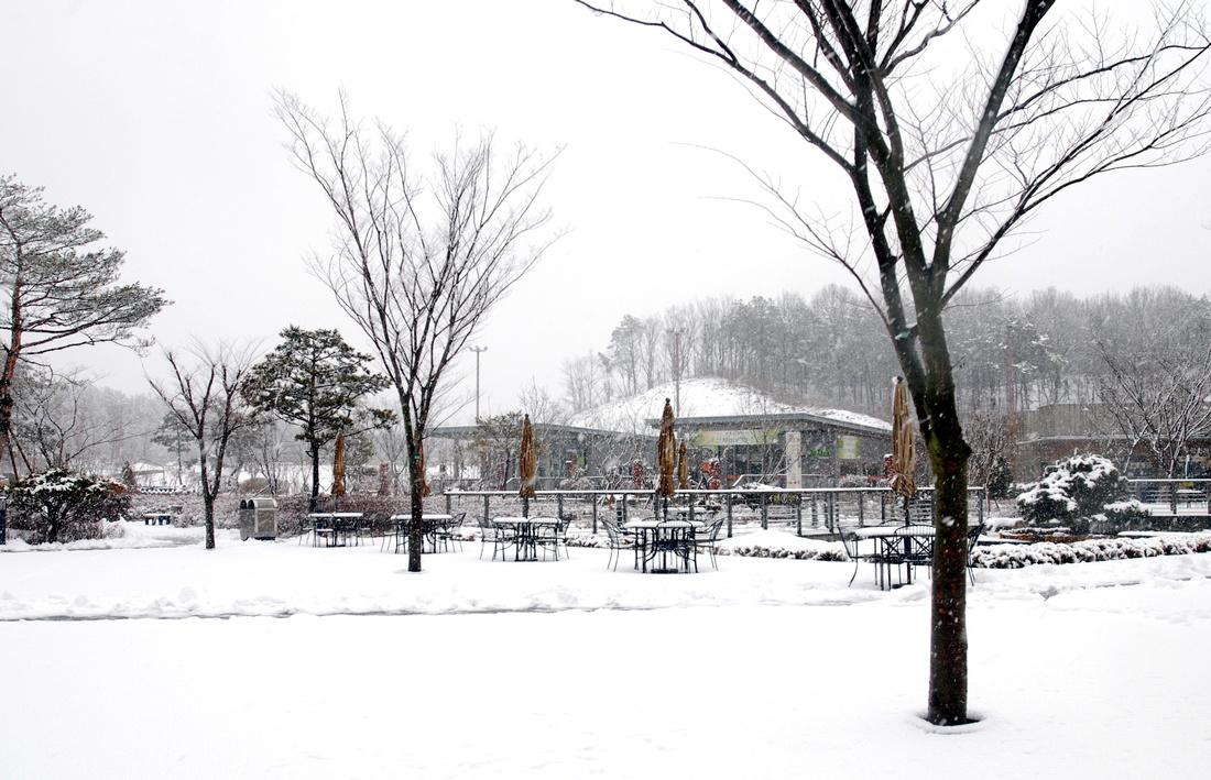 Winter park closed