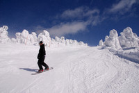 A boarder with Snow Monsters - Zao, Japan